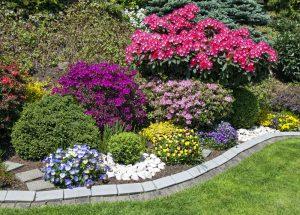 American Horticultural Society-Award Winner Landscaping San Jose